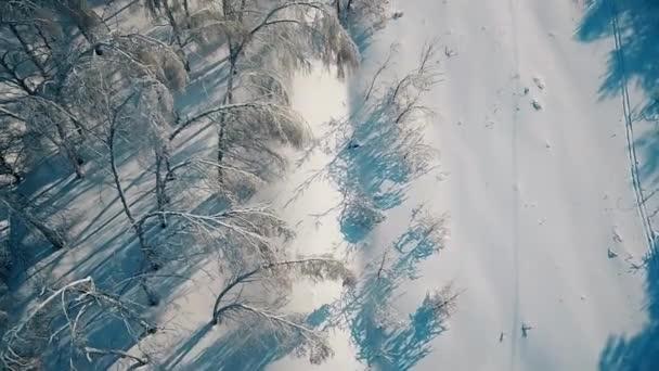 Téli jég tündér mese