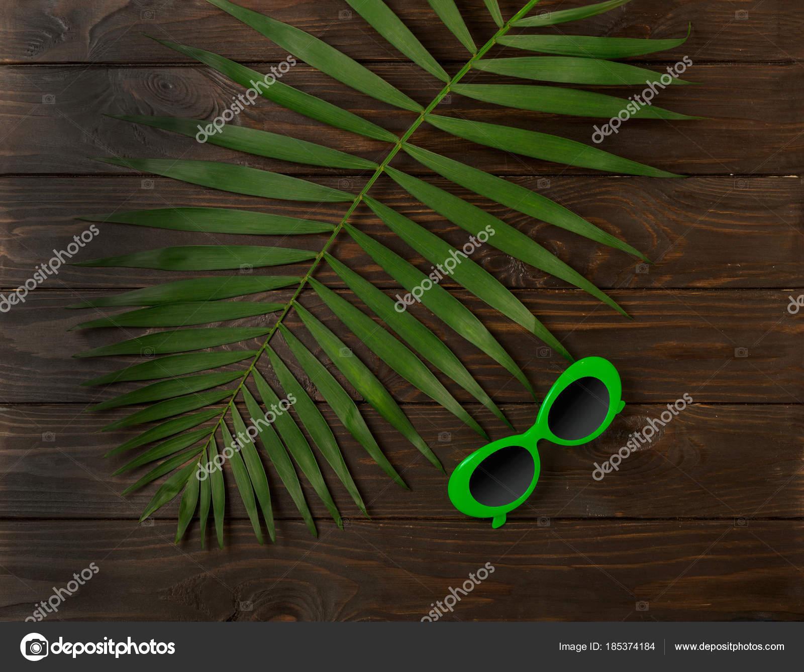 Playa accesorios hojas de color verde con palmeras tropicales en r ...