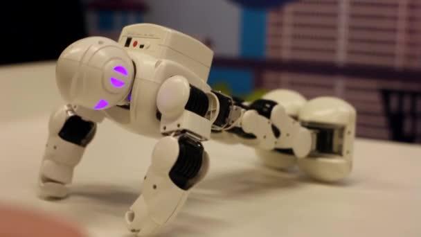Novosibirsk / Oroszország - február 17 2018. Corporation robotok. A robot kicsavart, a kezében. Robotika modern technológia. Mesterséges intelligencia. Kibernetikai rendszerek ma. HD