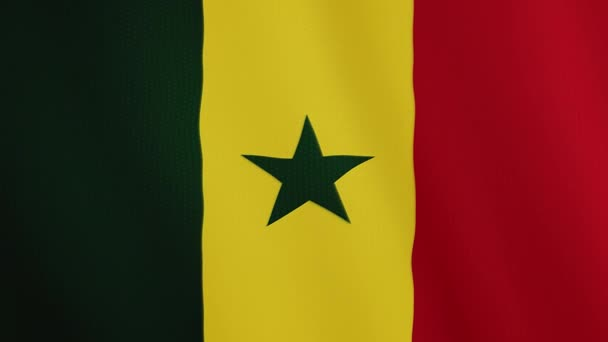Senegal flag waving animation. Full Screen. Symbol of the country.
