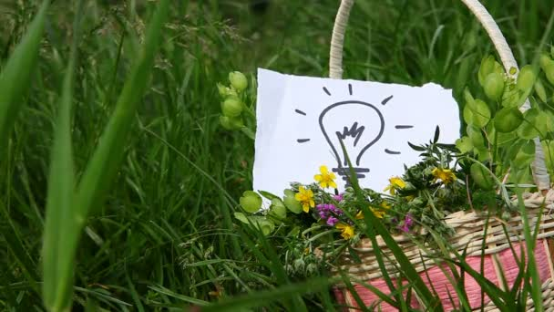 Light bulb, idea concept on nature green background outdoor