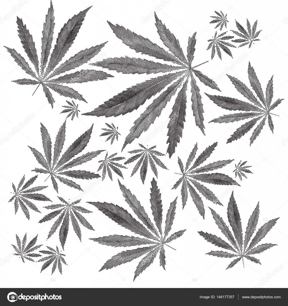 Illustration Vectorielle De Pointilles Feuille De Cannabis Sativa