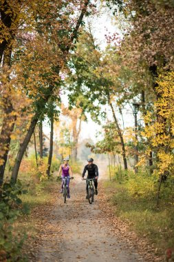 Couple of people cycling in autumn park stock vector