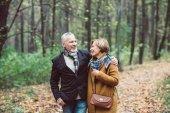 Zralý pár v podzimním parku