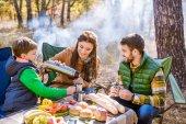 Fotografie šťastná rodina na piknik