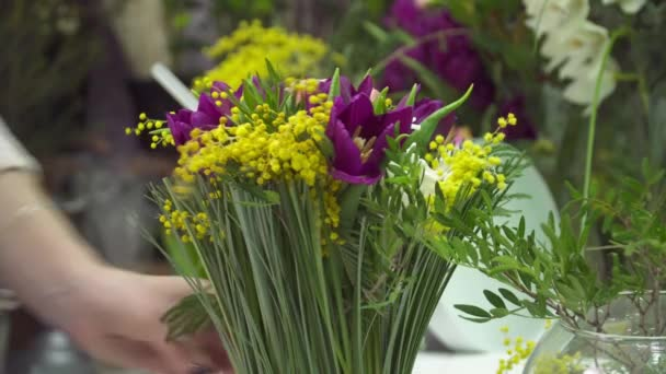 Florist is adding the flowers to the bouquet of mimosa and tulip