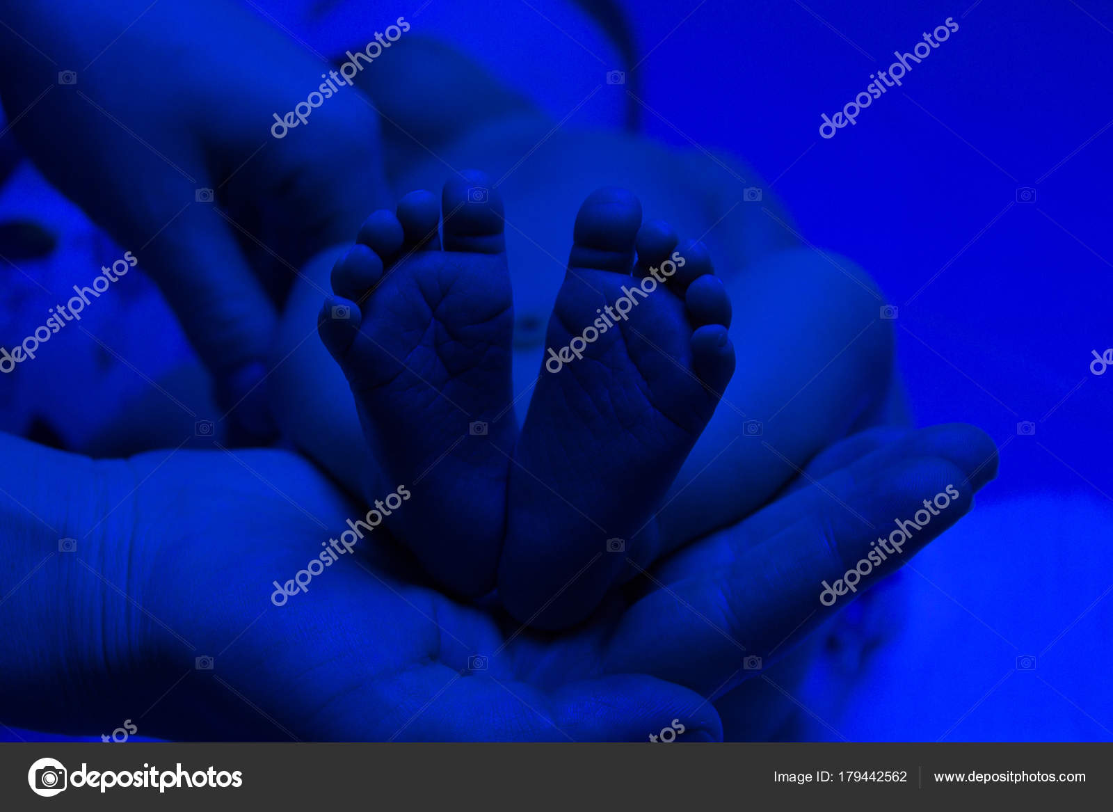 Mom holds legs in the palms of her hands. Newborn child baby hav ...