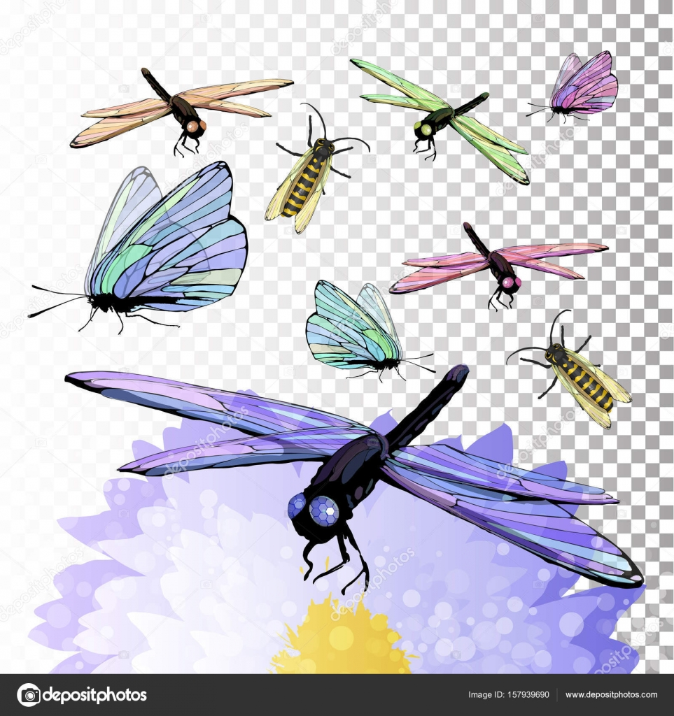 Dragonfly and butterfly on a flower symbol of summer stock dragonfly and butterfly on a flower symbol of summer stock vector biocorpaavc