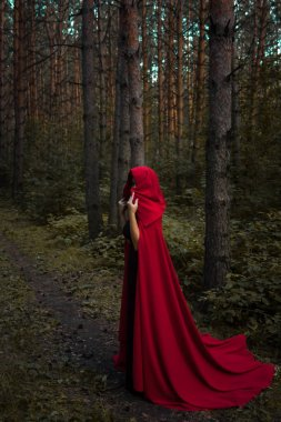 Halloween concept. A witch in red among