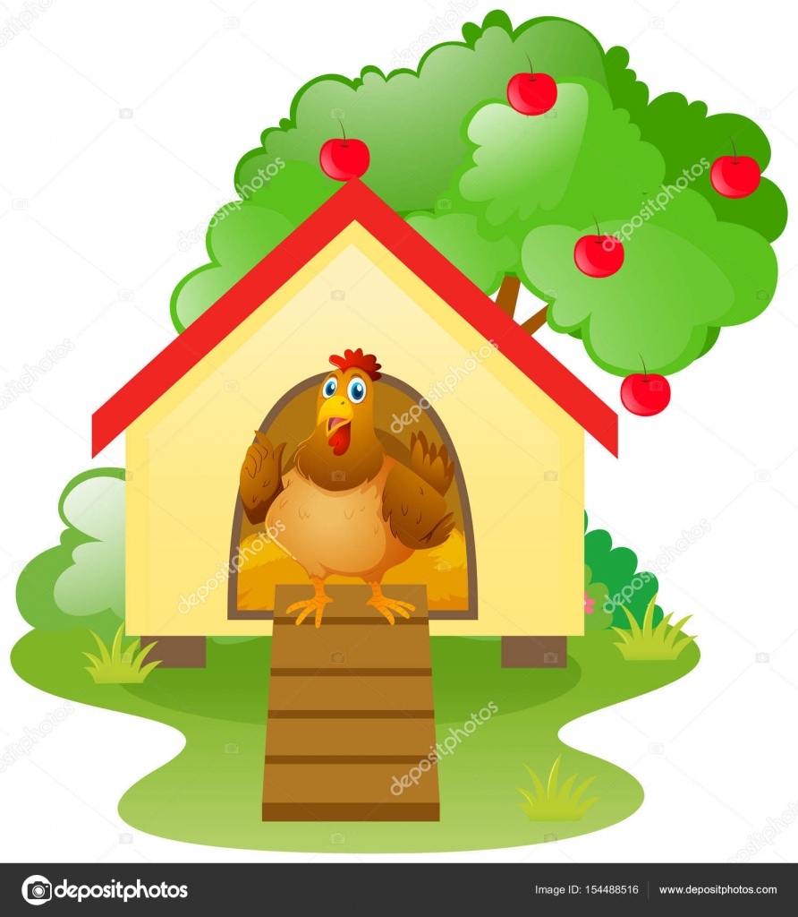 Chicken In The Coop Illustration Vector By Brgfx