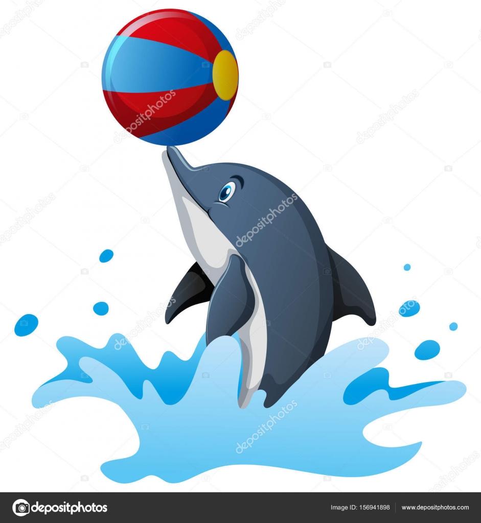 картинки дельфинчиков с мячом гордости