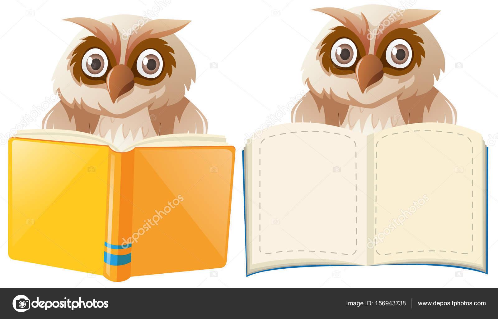 Zwei Eulen mit Buch Vorlagen — Stockvektor © brgfx #156943738