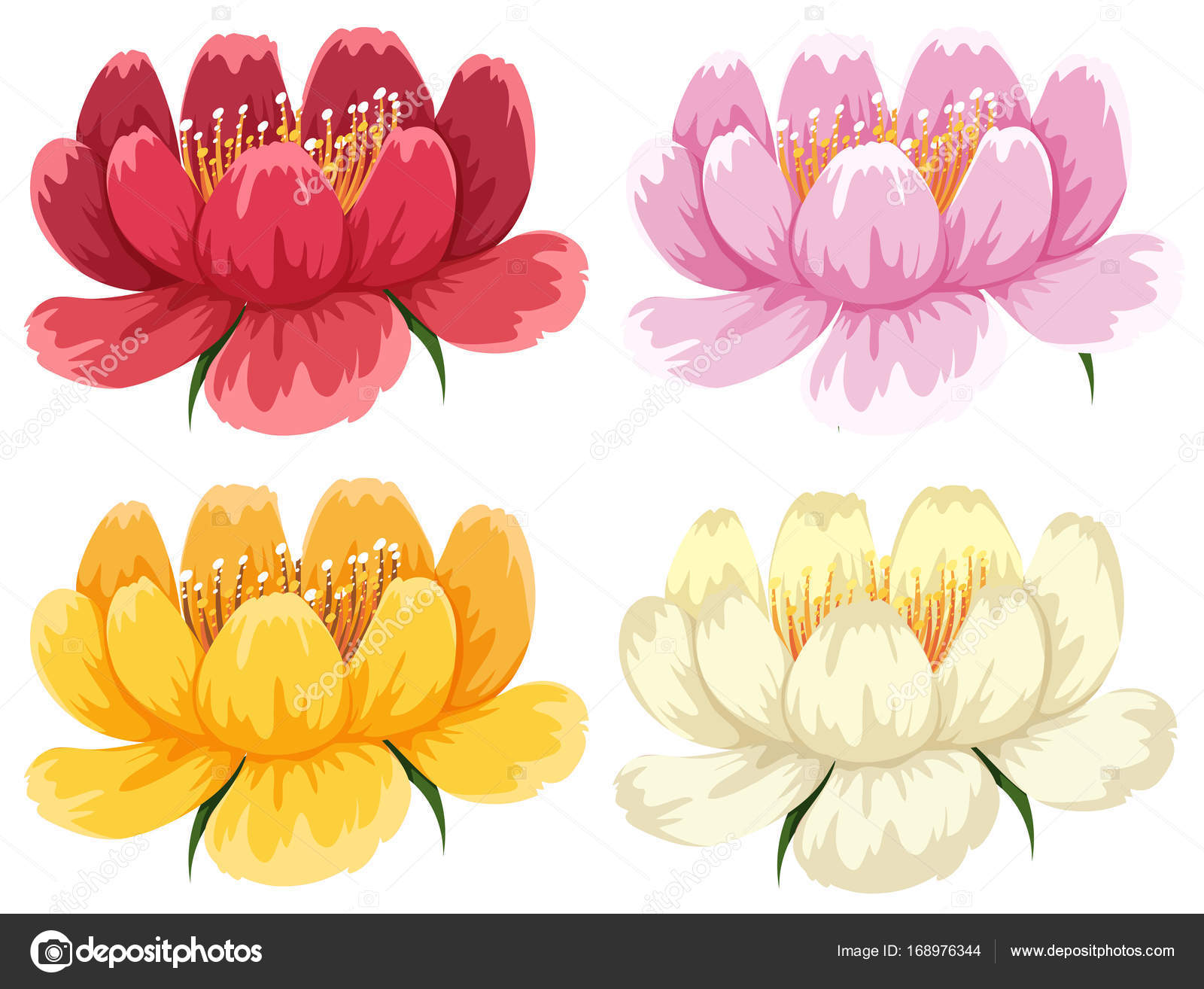 Four colors of the same type of flower stock vector brgfx 168976344 four colors of the same type of flower stock vector izmirmasajfo