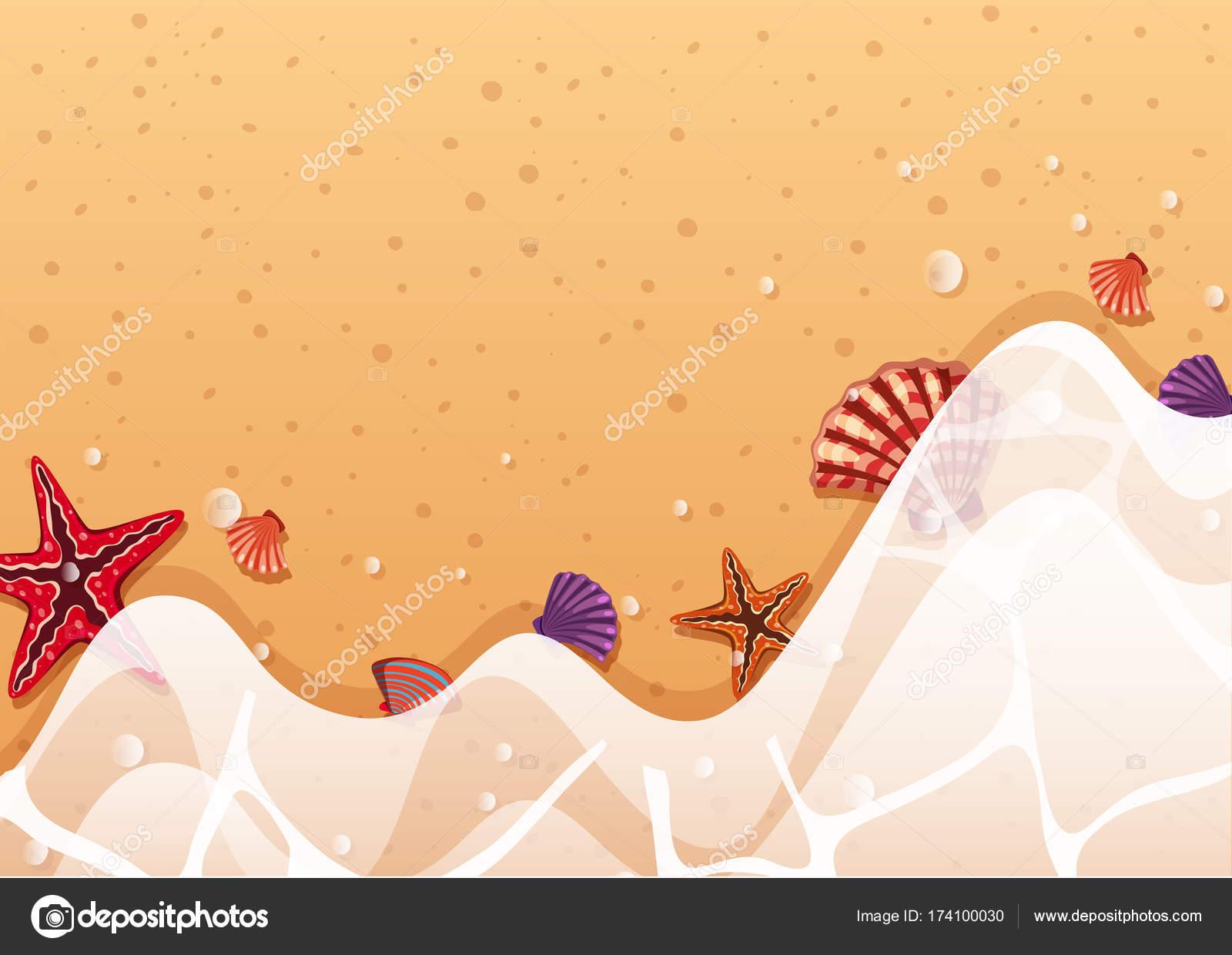 Modello di sfondo con stelle marine e conchiglie sulla riva