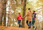 rodinné procházky v podzimním lese