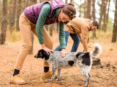 Smiling woman stroking dog in forest