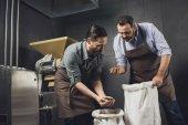Pivovar pracovníci inspekce zrna