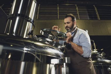 Brewer inspecting tank