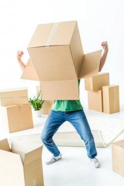 Young man fooling around with cardboard box on his head isolated on white stock vector