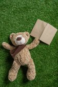 Photo teddy bear and book