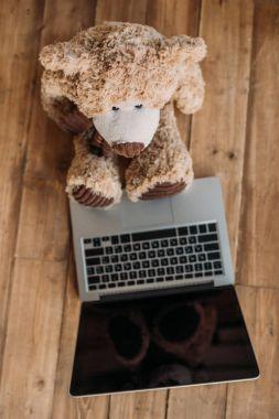teddy bear and laptop