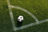 Fotografie soccer ball on grass