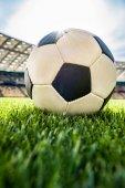 fotbalový míč na trávě