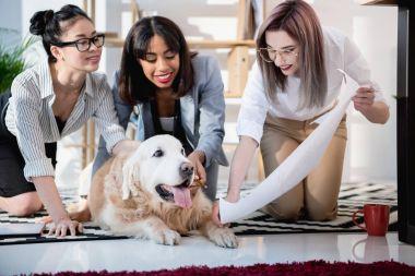 multiethnic businesswomen showing blueprint to dog