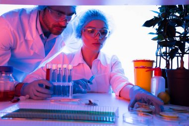 Scientists during work at laboratory