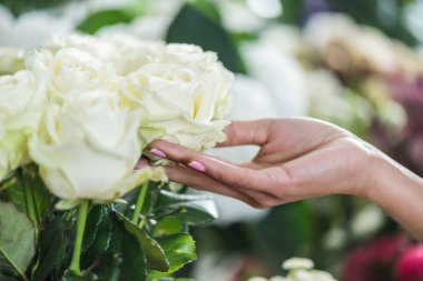 hand with beautiful roses