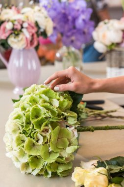 Cropped shot of hand of florist working with beautiful plants in flower shop stock vector