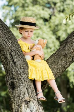 girl with teddy bear sitting on tree