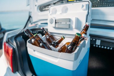 portable fridge with beer in car