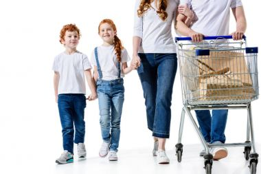happy family with shopping trolley