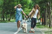 Paar reitet mit Hund an Bord