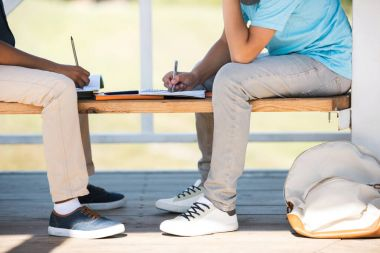 Boys studying on bench