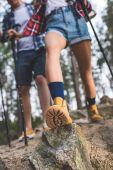 Photo couple on hiking trip