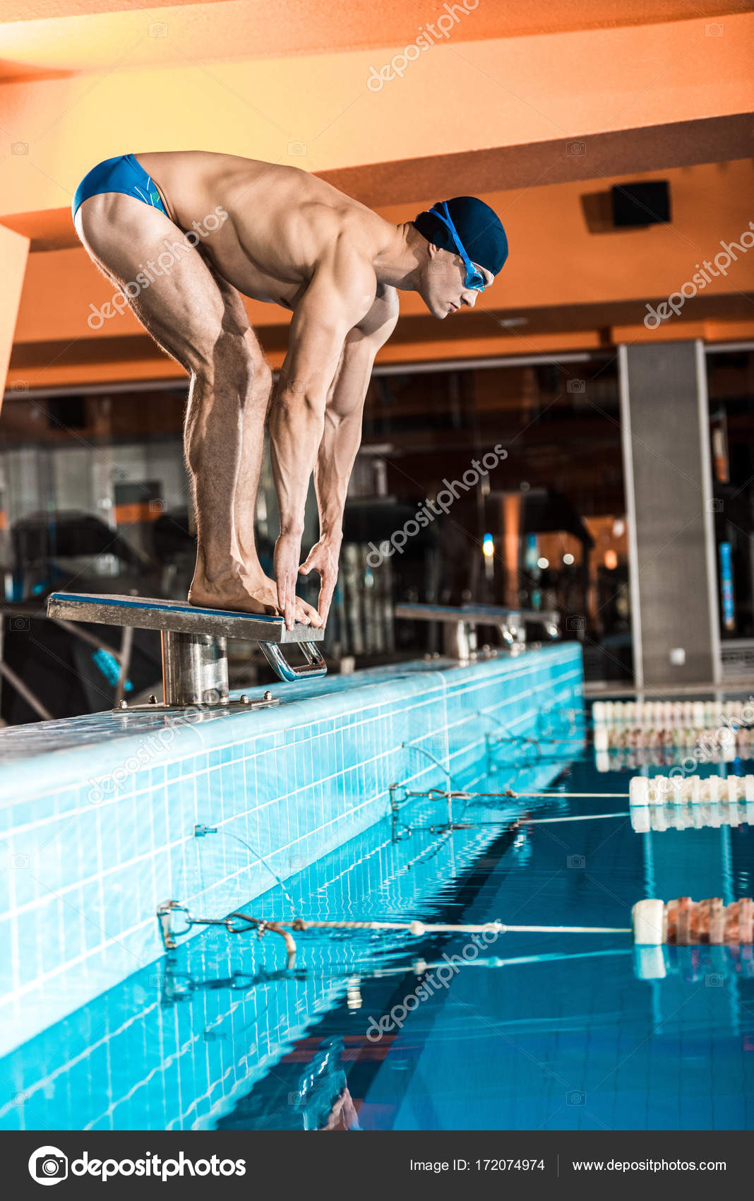 Charming Swimmer Standing On Diving Board Ready To Jump Into Competition Swimming  Pool U2014 Photo By ArturVerkhovetskiy