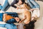 felülnézete a többnemzetiségű tinédzserek kutya ágy, és figyelembe selfie feküdt