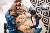 felülnézete a multikulturális tizenévesek ágyon és palming kutya