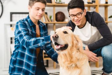 smiling teen boys palming dog at home