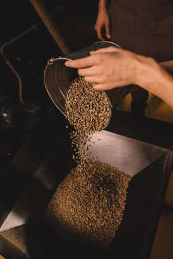 partial view of coffee roaster pouring coffee beans into roasting machine