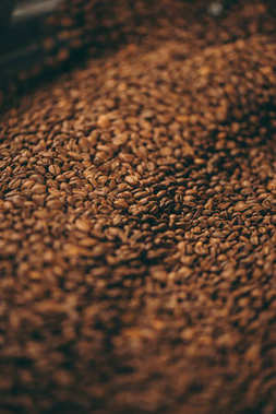 selective focus of coffee beans roasting process