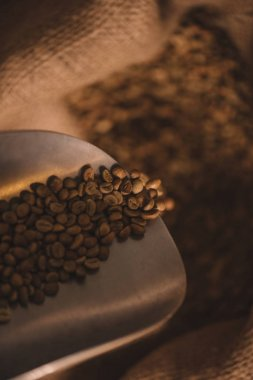 close up view of roasted coffee beans on metal scoop