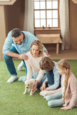 young family sitting on yard of cardboard house with their labrador puppy