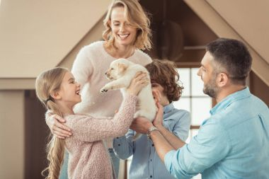 young family with beautiful labrador puppy in front of cardboard house