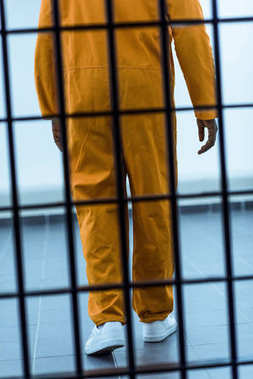 cropped image of african american prisoner behind prison bars