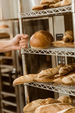 baker holding shelves with fresh loaves of bread on baking manufacture