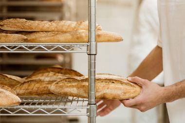 cropped shot of handsome baker putting fresh bread on shelf at baking manufacture