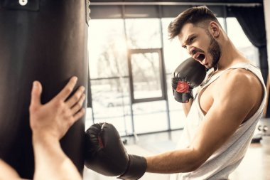 aggressive young boxer training with punching bag in gym
